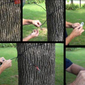 Gamo Tree Spider Target